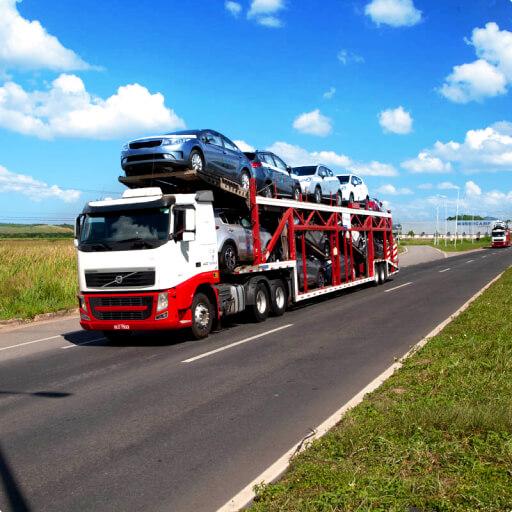 Empresa de Transporte de Caminhão Cegonha